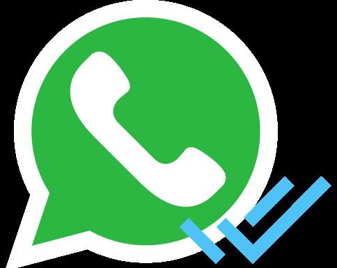 Whatsapp Club Magellano