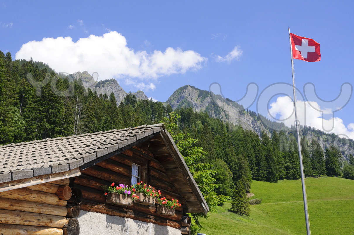 heidi-alp-in-maienfeld--switzerland-b09a16
