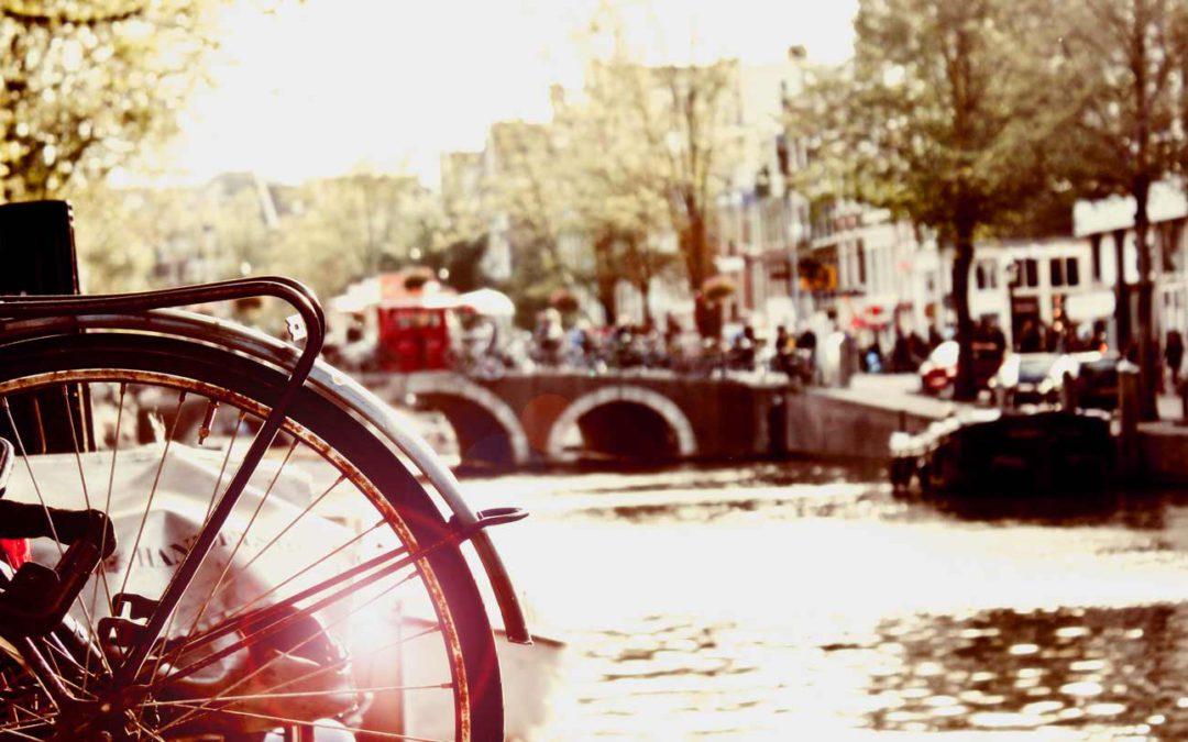 Amsterdam in primavera: tulipani e mulini a vento
