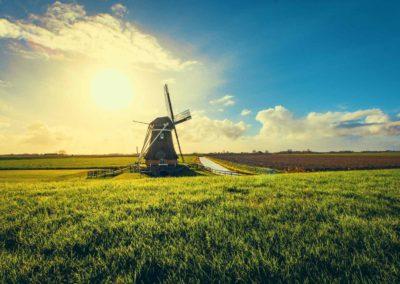 Tour Olanda Mulini